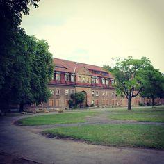 #erfurt #erfurtcity  #erfurtliebe #erfurtbilder #erfurtstagram #erfurtbethecity #erfurtaltstadt