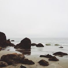 www.editionlocal.com >> Bodega Bay, California.