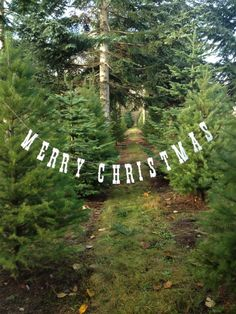 Merry Christmas Banner. Christmas Photo Prop. by LittleRetreats
