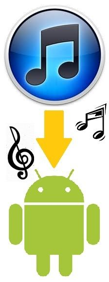 Want to move your music from iTunes to an Android-powered smartphone? Geek Squad are here to help. This easy guide will show you how to move files from iTunes to a device running the Android Operating System. Move Music, Geek Squad, Music Files, Operating System, Sharks, Itunes, Smartphone, Android, Swimming