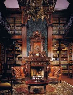 I selected this image because it shows the library. It's important because it's one of the main settings in the story.