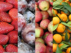 Seasonality Chart: Fruit and Nuts | CUESA http://www.cuesa.org/eat-seasonally/charts/fruit