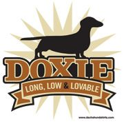Doxie~ long, low & lovable