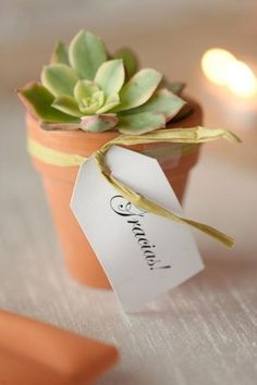There's nothing cuter than succulent favors stuffed in a teeny container. Guests can display them in their homes or on office desks. The good thing about mini succulent gifts is they don't take up too much space and add a nice bit of greenery to your surroundings. Photo by We Heart Photography via Style Me Pretty