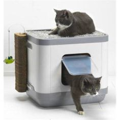 Catcon CAT Litterbod Bed & Playgroung All in One for Cat Pet Supplies Plus, Online Pet Supplies, Litter Box With Lid, Litter Box Covers, Tidy Cats, Pet Supply Stores, Bird Toys, Cube, Cleaning