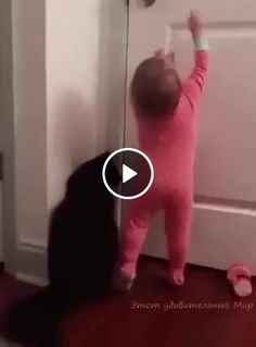 Child and the cat opening the door Funny Videos For Kids, Funny Cat Videos, Kids Videos, Funny Animal Memes, Cute Funny Animals, Funny Babies, Funny Kids, Kittens Cutest, Cats And Kittens