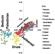 As you can see here, the interesting point is that Jewish ancestral quanta is roughly predictive of genetic position. This shouldn't be that surprising once we know that Jews and non-Jews separate so cleanly (e.g., someone who is biracial would be located between their two parent racial clusters on any plot), but it is striking nonetheless in reaffirming the genetic