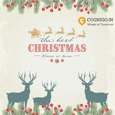 Team Cognigo wishes all a Merry Christmas :) May this festival bring prosperity and health :) #MerryChristmas #BlessYou