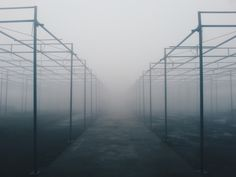 architectural photography of foggy metal building frames Beautiful, free Minimal photos from the world for everyone - Infinity Collections Focus Photography, Creative Photography, Nature Images, Nature Pictures, Perspective Pictures, Minimal Photo, Photo Tree, Dark Places, Outdoor Settings