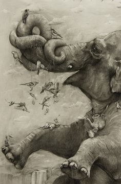 Elephant drawings | by Adonna Khare, graphite work