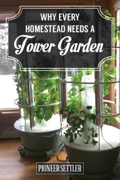 Why every homestead needs a tower garden, including yours