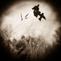 Birds on Wire. © Lori Vrba