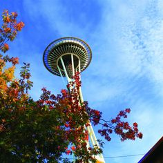 """""""With unrivaled views of Seattle, the Space Needle is a must visit for tourists and locals alike. And it's a great deal, tours start at $11."""" – SJP 