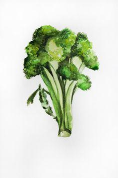 Original watercolor painting, broccoli art, Vegetables watercolor, broccoli watercolor, Kitchen decor, botanical art, original art, ART OOAK by MaryArtStudio on Etsy