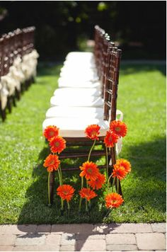 Gerber daisy stems planted in the ground with water tubes made for some extra cheery (and inexpensive) ceremony style Orange Wedding Flowers, Daisy Wedding, Wedding Bells, Fall Wedding, Our Wedding, Dream Wedding, Wedding Ideas, Altar, Aisle Flowers