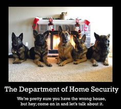 German Shepherds and The Department of Home Security