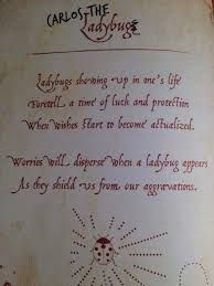 Image result for descendants mal's spell book