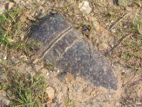 85- Un obus de la Première Guerre Mondiale réapparaît dans le Santerre (octobre 2004)