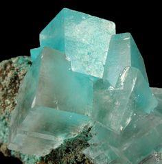 Aurichalcite in Calcite on Limonite matrix / Ojuela Mine, Mexico