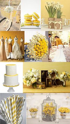 Mustard Yellow & White