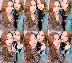 TWICE chaeyoung and mina, michaeng