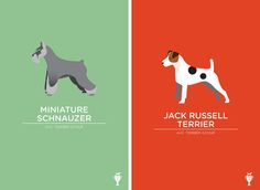 I'm kinda freaking out about these dog breed illustrations by Portland, OR-based artist Bethany Ng. She has prints of just about every breed imaginable and somehow manages to capture each of their unique traits with a stroke of minimalist genius!