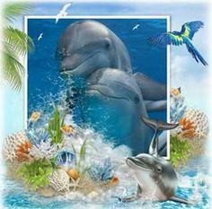Dolphin Photos, Dolphin Art, Bottlenose Dolphin, Water Animals, Deep Water, Light House, Rainbow Bridge, Beautiful Lights, Elephants