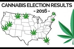 Check out the 2016 cannabis election results!