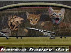 Oh Happy Day - Buona Giornata - gif animated - Non solo Musica e Ricette