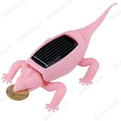 Educational Solar Toys Chameleon with Cute Lucky Golden Color Coin For Kid Child