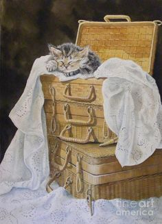 ♥CAT♥ 266 KITTY LOVES WICKER (SANDY BRINDLE)