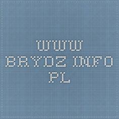 www.brydz.info.pl