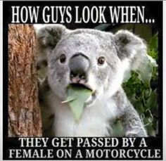 How #guys #look when they get passed by a #girl on a #motorcycle #LetsGetWordy