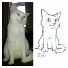 White Neko Sketch by Banzchan.deviantart.com on @deviantART
