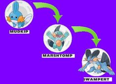 Wailmer - #320 - Water Type | Pokedex - Generation 3 ... Wailmer Pokemon Evolution Chart