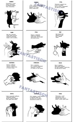 Shadow Puppets With Hands, Teater, Watch Sailor Moon, Hand Shadows, Sign Language Alphabet, Cute Easy Drawings, Finger Art, Animal Tracks, Shadow Art