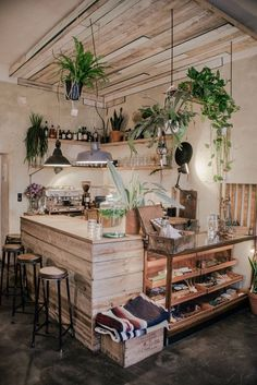 Defined space with wood plank ceiling and hung planters (Jason & Amy like)