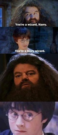 54 New Ideas For Funny Harry Potter Memes Awesome Hogwarts Hery Potter, Harry Potter Puns, Movies Quotes, Time Quotes, Hogwarts, Slytherin, I Laughed, Funny Memes, Funny Quotes