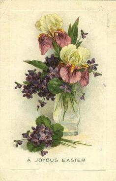 Vintage Easter Card Irises