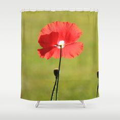 Standing Alone - JUSTART © Shower Curtain by JUSTART  - $68.00  #justart #society6 #s6 #poppy #floral #flower #garden #summer #red #green #showercurtain #curtain #shower #bathroom #home #decor
