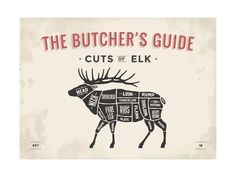 size: Art Print: Cut of Meat Butcher Diagram - Elk by foxysgraphic : Cooking Tri Tip, Cooking Corn, Cooking Ribs, Cooking Turkey, Meat Butcher, Butcher Shop, Water Bath Cooking, Beef Tenderloin Roast, Pork Roast