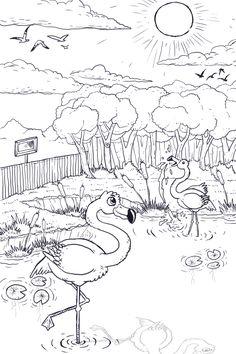 Ilustração para o livro O Segredo do Flamingo cor-de-rosa (Ane Braga), by Jonathas Correa Botelho.