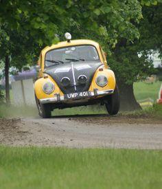 Rally Beetle