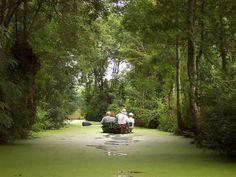 """Marais Poitevin, promenade en """"plate"""" (la barque traditionnelle appelée au """"batai"""" ou """"lasse"""")  dans la """"Venise verte"""", la partie orientale du marais poitevin connue sous le nom de """"marais mouillé"""" par opposition au """"marais desséché""""."""
