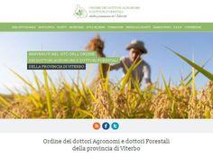 http://www.agronomieforestali.viterbo.it/