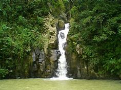 Google Image Result for http://www.nomad4ever.com/wp-content/uploads/2009/06/one-of-7-waterfalls-at-mambukal-negros-occidental.jpg