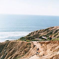 Surfers above La Jolla's Torrey Pines State Beach; among the regulars is at least one Nobel Prize winner