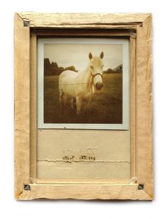 drive... Frame, Artwork, Handmade, Crafts, Animals, Inspiration, Photo Ideas, Insects, Craft Ideas