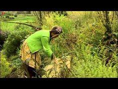 ▶ Graminées de l'Ortie-Culture (Marie Albert et Pascal Moreau) - YouTube