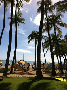 Grab a #surf board and hit the #beach! #Waikiki #Hawaii